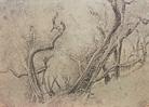 Walter Herzog. Obstbäume